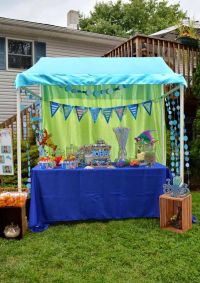 1000+ ideas about Pvc Canopy on Pinterest   Pvc pipe tent ...