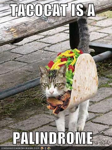 TACOCAT is a palindrome.