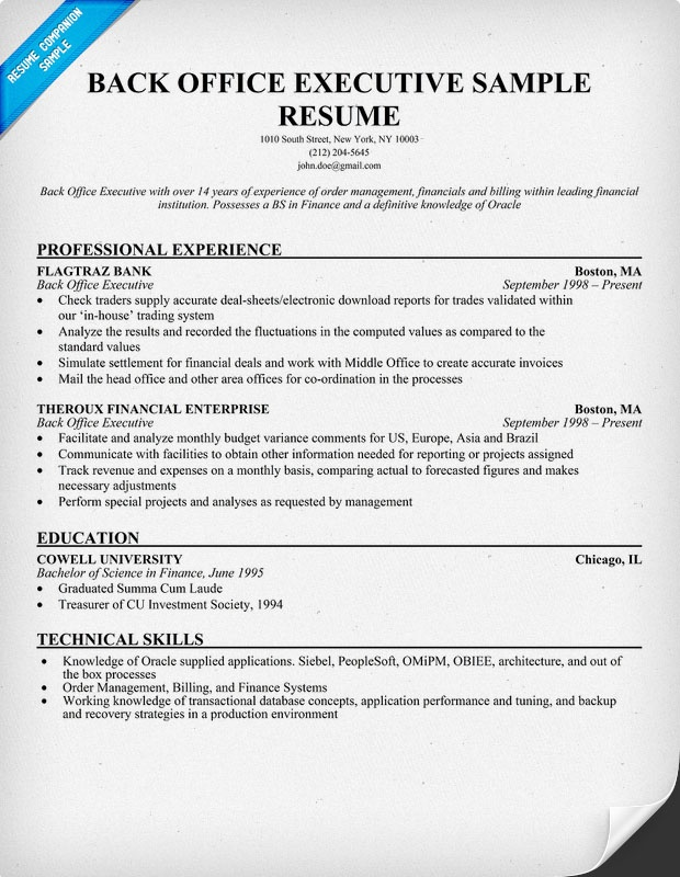 sample resume for back office executive