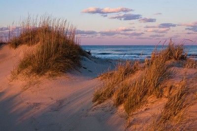 Florida Beach Fall Wallpaper Orange Light From The Setting Sun Illuminates Sand Dunes