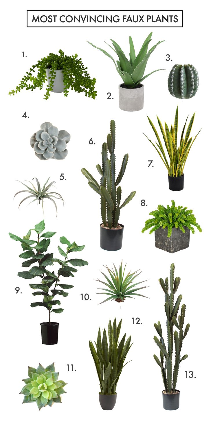 Artificial plants for kitchen - Download