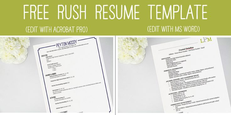 sorority resume template free