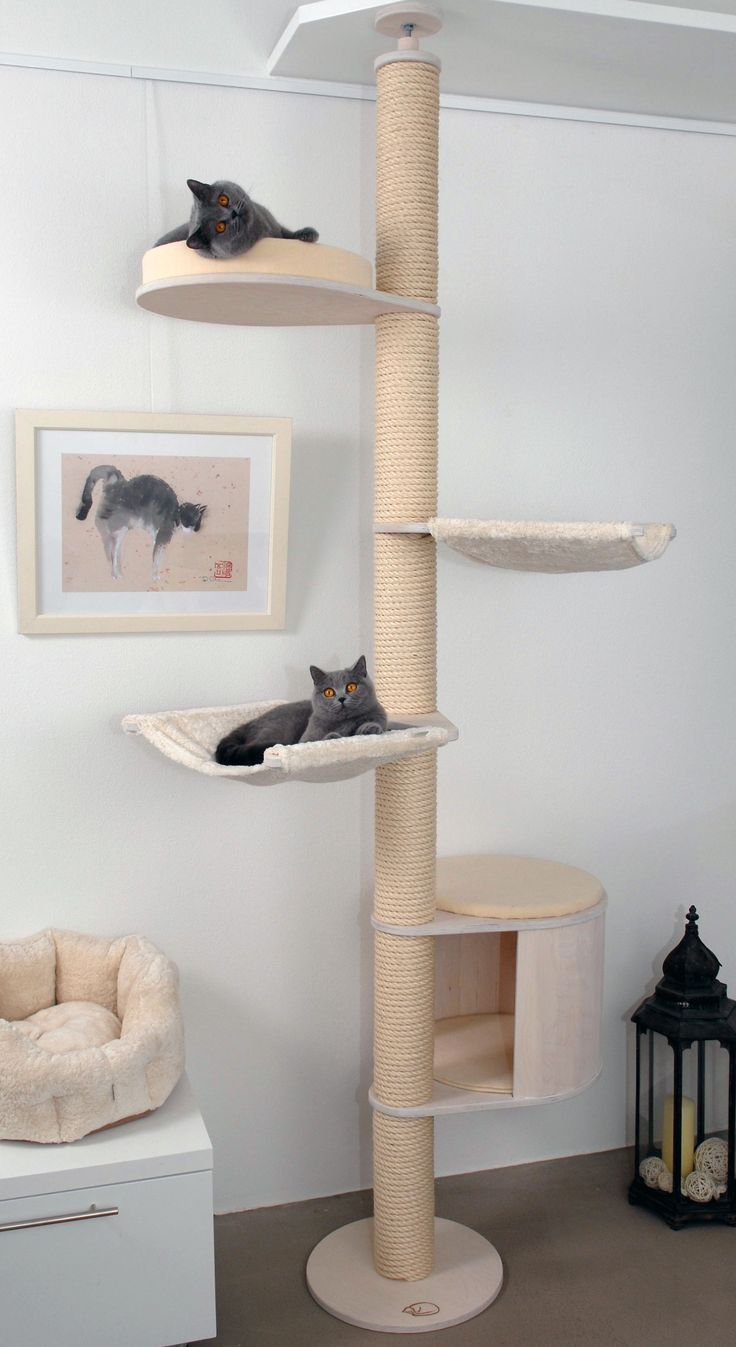 32 Best Images About Cat Trees Kratzbaum On Pinterest
