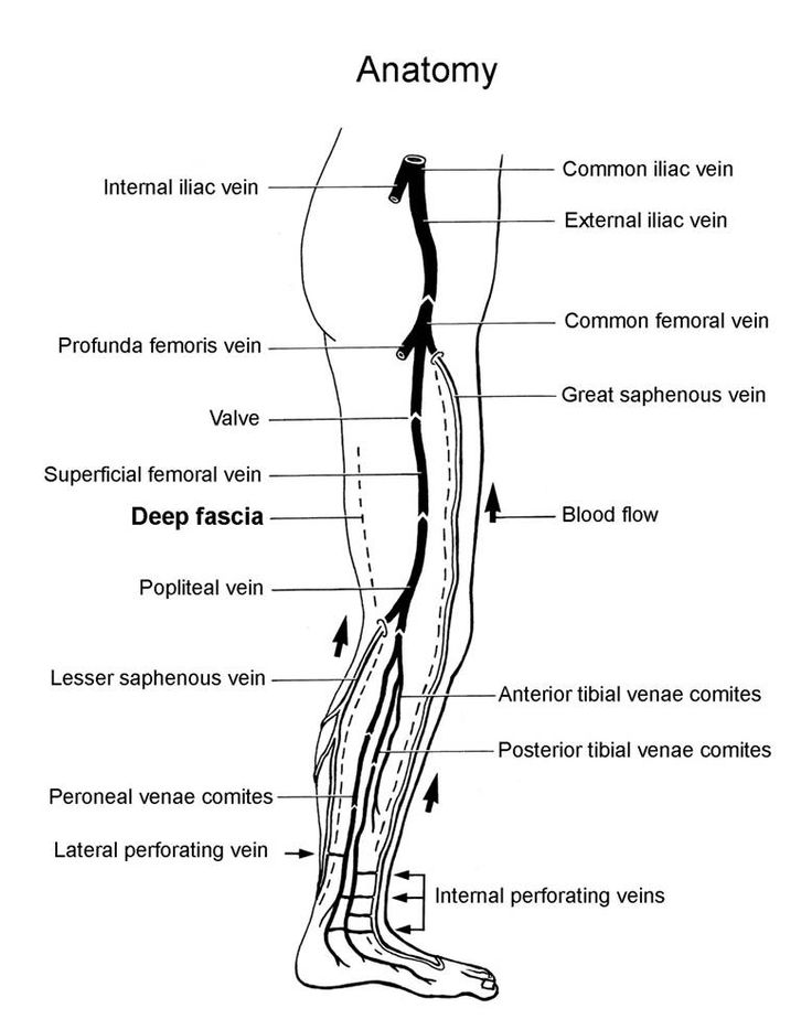2005 xt225 wiring diagram
