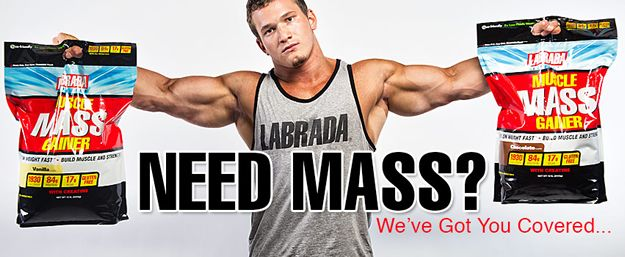 do mass gainer work