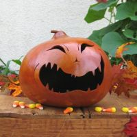 1000+ images about Gourds - Halloween on Pinterest ...