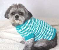 1000+ ideas about Small Dog Sweaters on Pinterest | Dog ...
