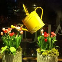 17+ best ideas about Spring Window Display on Pinterest ...
