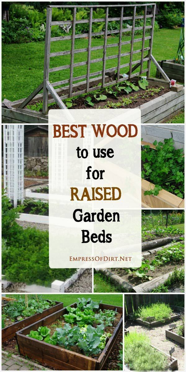 25 Best Ideas About Raised Garden Beds On Pinterest