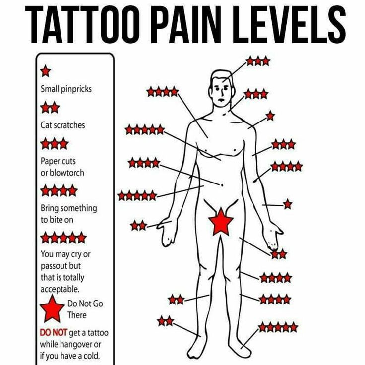 tattoo level diagram of paint