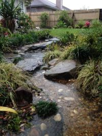 1000+ images about Rain Gardens/Dry River Rock Gardens on ...