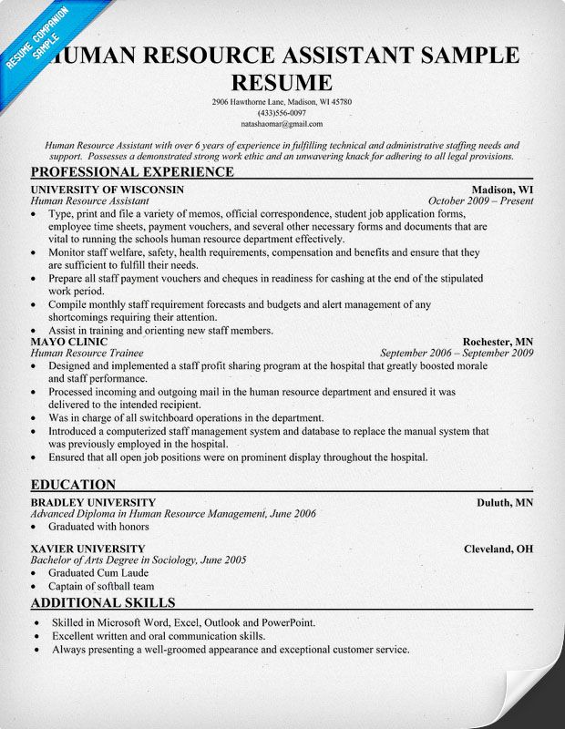resume examples for human resources manager