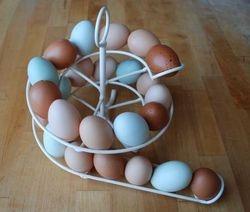 Spiral egg holder/dispenser
