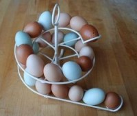 Spiral egg holder/dispenser