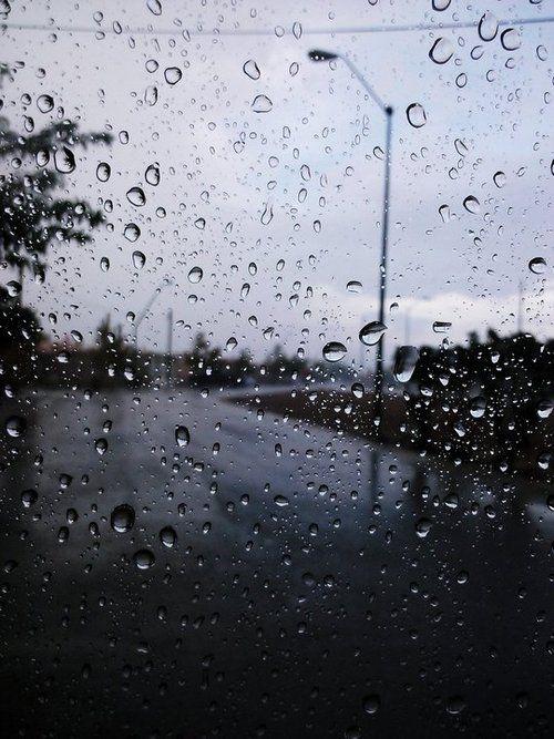 Raindrops Falling On Flowers Wallpaper 25 Best Ideas About Rain Window On Pinterest Rainy Days