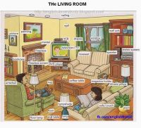 English for beginners: the living room | English ...