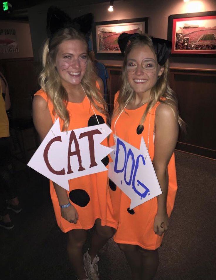 116 best images about Feline Canine Little CatDog on