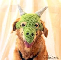 17 Best ideas about Dragon Costume on Pinterest ...
