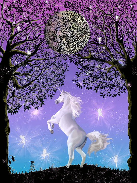 Colorful Animal Print Wallpaper Dancing In The Moonlight Unicorn Full Moon Tree Starry