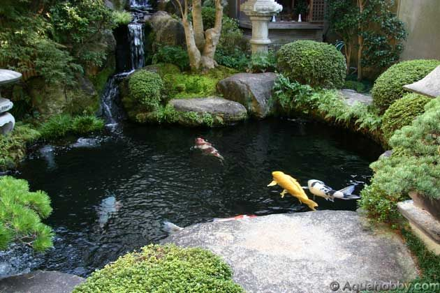Pond Design Ideas Koi Ponds 8 The Best Garden Design Landscape