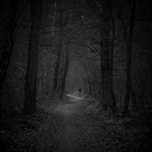 Macbeth Wallpaper For Iphone Dark Forest Path He Was On A Narrow Path With Thick Trees