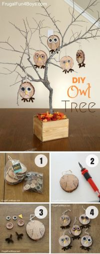 25+ Best Ideas about Owl Home Decor on Pinterest