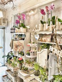 25+ Best Ideas about Flower Shop Interiors on Pinterest ...