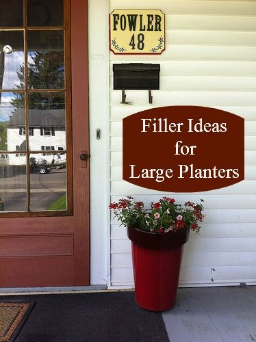 Ikea House Plants Filler Ideas For Large Planters | Ideas For The Garden