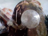 Meth pipe Marlborough Man | insomnia | Pinterest | Pipes