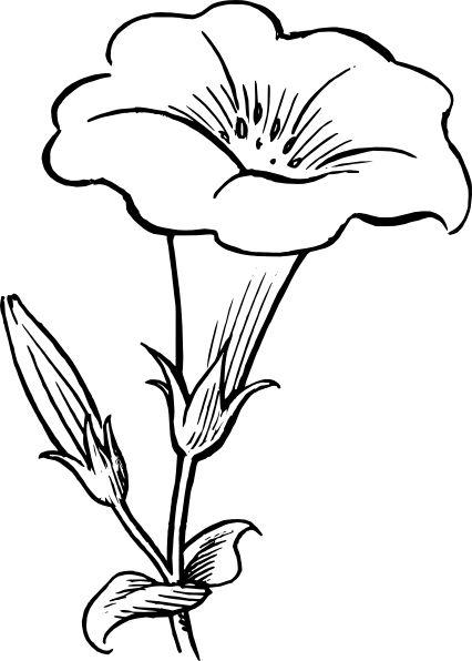 1998 toyota corolla schema cablage
