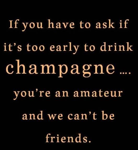 Funny Quote Wallpapers For Phone Champagne Quotes Gallery Wallpapersin4k Net