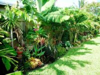 2005 best images about tropical gardens on Pinterest ...