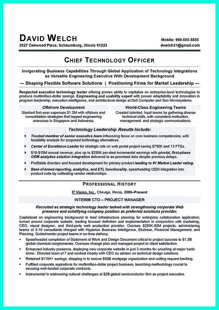 cto resume examples independent contractor resume samples cto resume examples