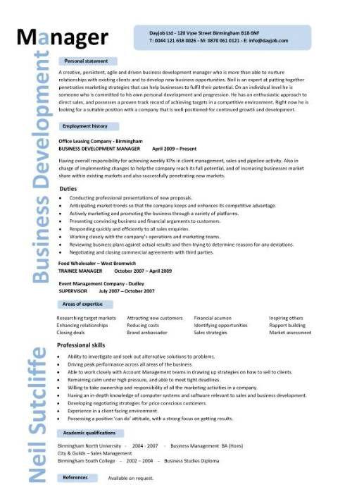 cv expert senior management modele
