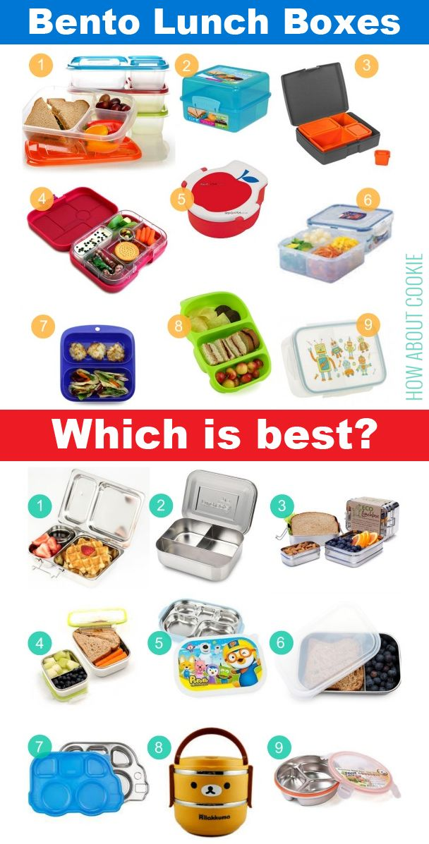 Bento Lunch Boxes Which Brand Is Best How Do