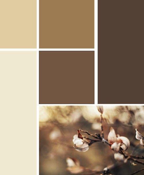 1000+ Ideas About Brown Color Schemes On Pinterest | Brown Colors