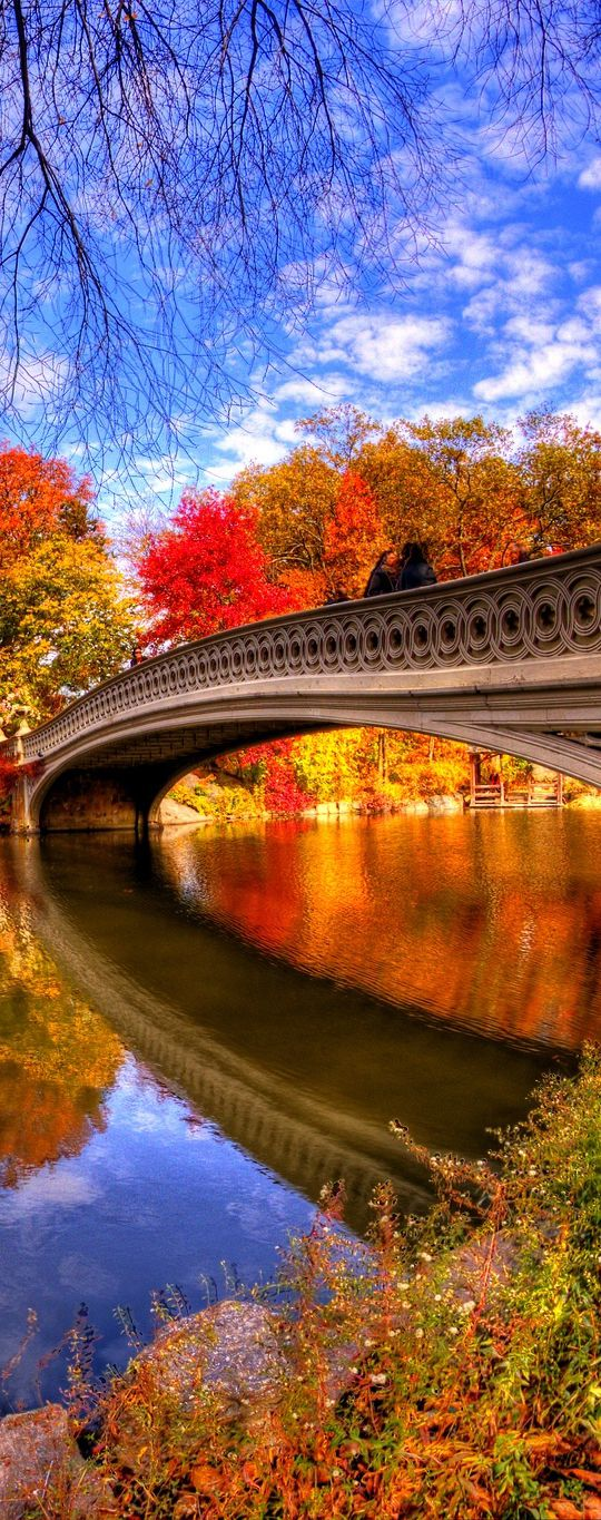 Fall In Central Park Wallpaper 223 Best Images About Autumn In New England On Pinterest