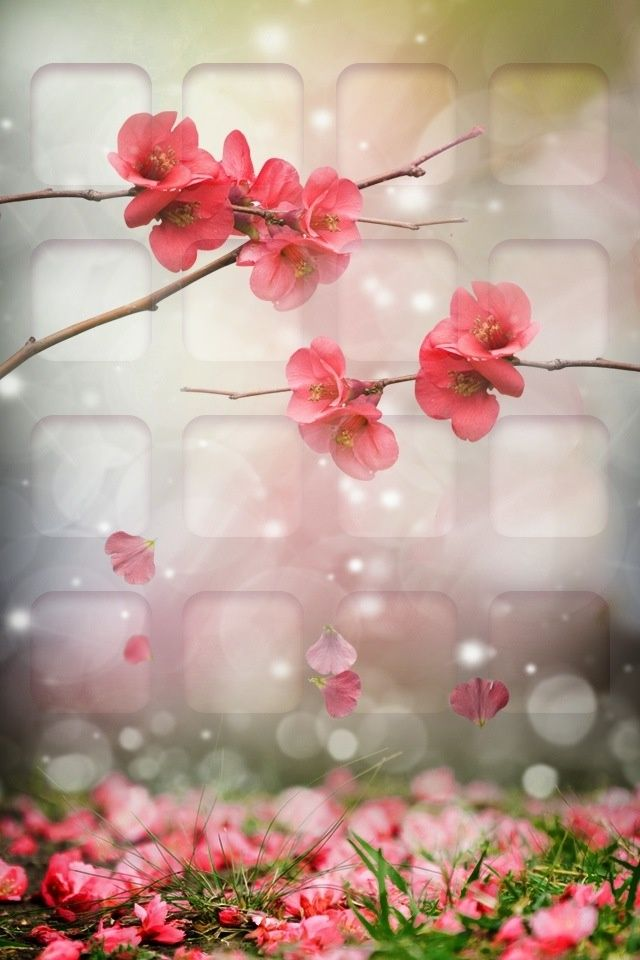 Bible Verse Wallpaper Iphone 6 5 Iphone Wallpapers For May April Showers Bring May