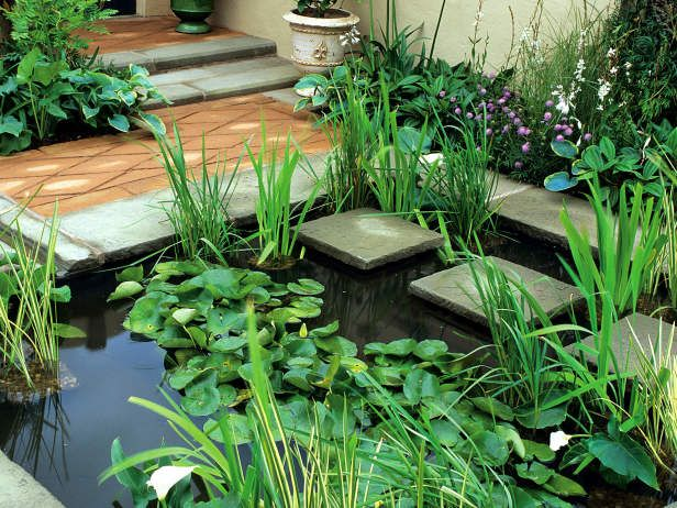 Inexpensive Water Features