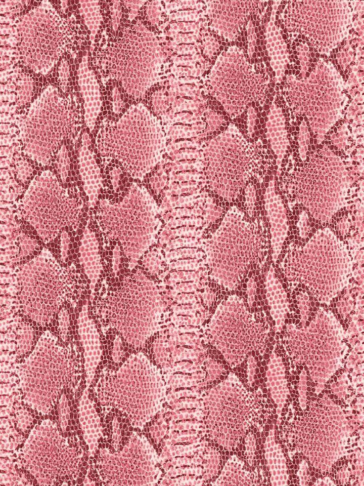 Cute Desktop Wallpaper Teacher 86 Best Images About Moda Animal On Pinterest Zebra