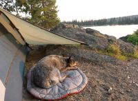 17 Best images about Backpacking on Pinterest | Mountain ...