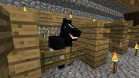 Black minecraft horse | Minecraft | Pinterest | Minecraft ...