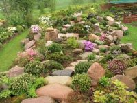 Rockery plants Rock garden ideas | rock gardening ...
