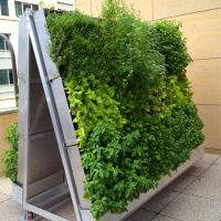 1000+ images about High Rise Patio Gardening on Pinterest ...