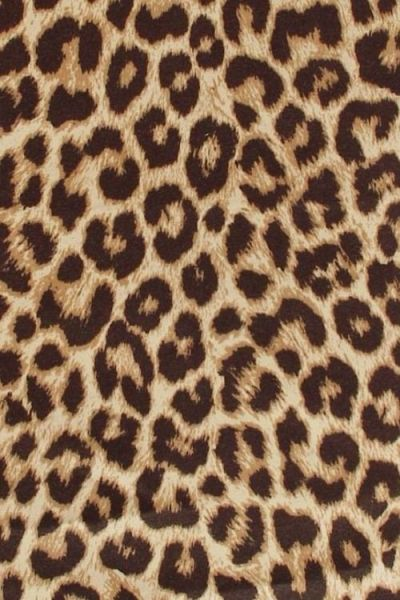 17+ best ideas about Leopard Print Background on Pinterest | Leopard print wallpaper, Leopard ...