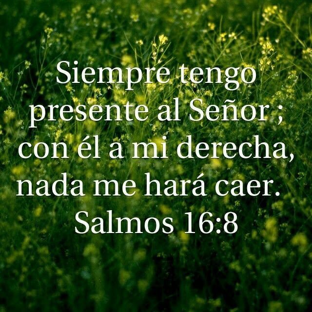 Cute Faith Wallpapers Salmo 16 8 Salmos Pinterest