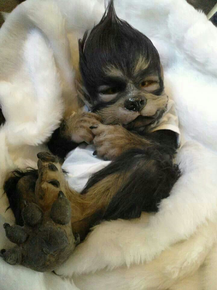 Newborn Babies Yesterday 12 Best Images About Werewolf Babies On Pinterest Models