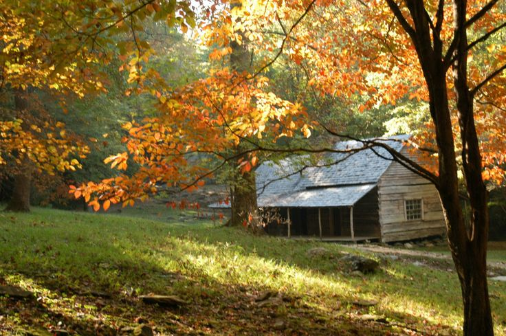 Fall In The Smokies Wallpaper Fall In The Smokies Ogle Cabin On The Historic Roaring