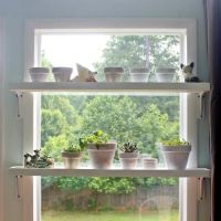 25+ Best Ideas about Plant Shelves on Pinterest | Cultivo ...