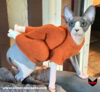 Sphynx Cat Clothes Cat Turkey Sweater Dog Costume ...